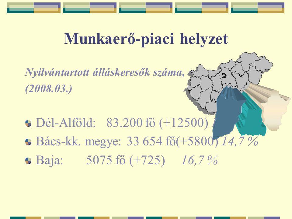 Munkaerő-piaci helyzet Nyilvántartott álláskeresők száma, aránya (2008.03.) Dél-Alföld: 83.200 fő (+12500) 14,6 % Bács-kk. megye: 33 654 fő(+5800) 14,