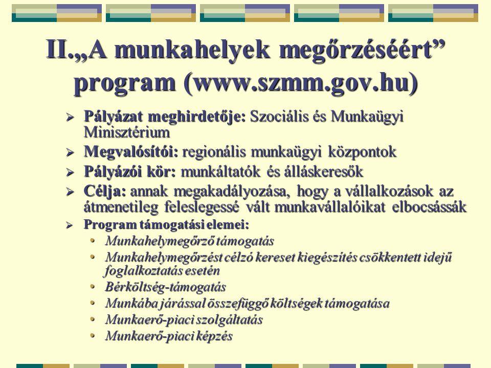 """II.""""A munkahelyek megőrzéséért"""" program (www.szmm.gov.hu)  Pályázat meghirdetője: Szociális és Munkaügyi Minisztérium  Megvalósítói: regionális munk"""