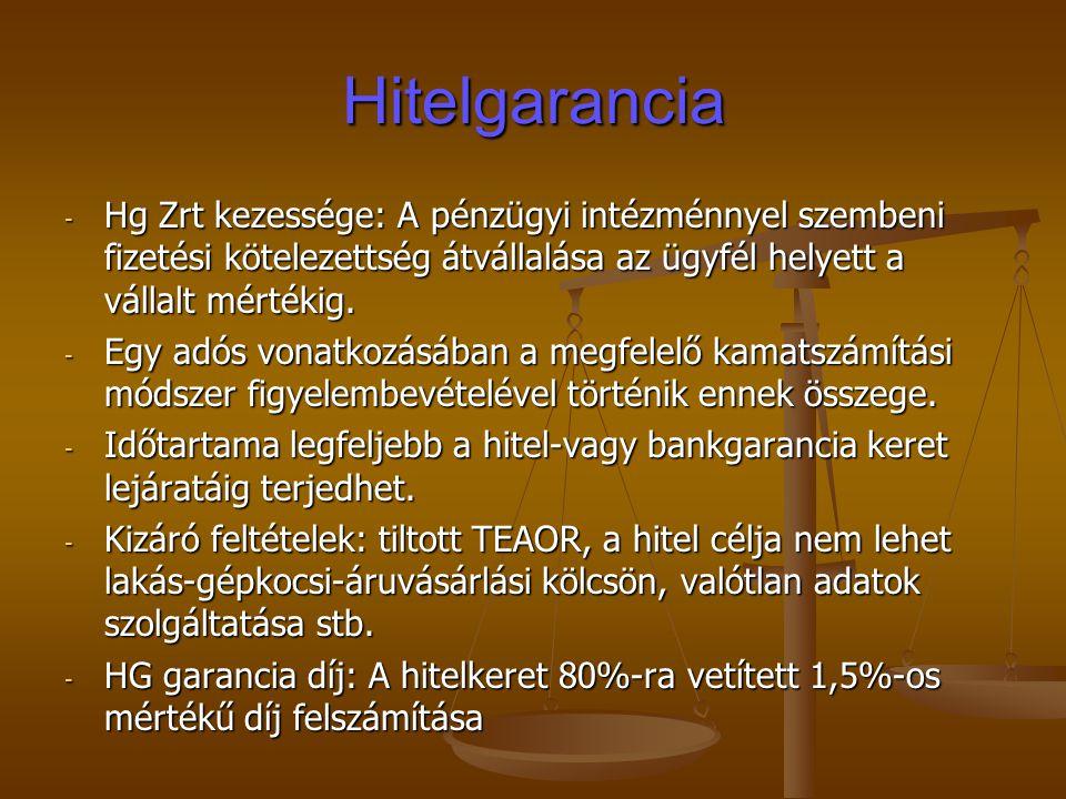 Hitelgarancia - Hg Zrt kezessége: A pénzügyi intézménnyel szembeni fizetési kötelezettség átvállalása az ügyfél helyett a vállalt mértékig. - Egy adós