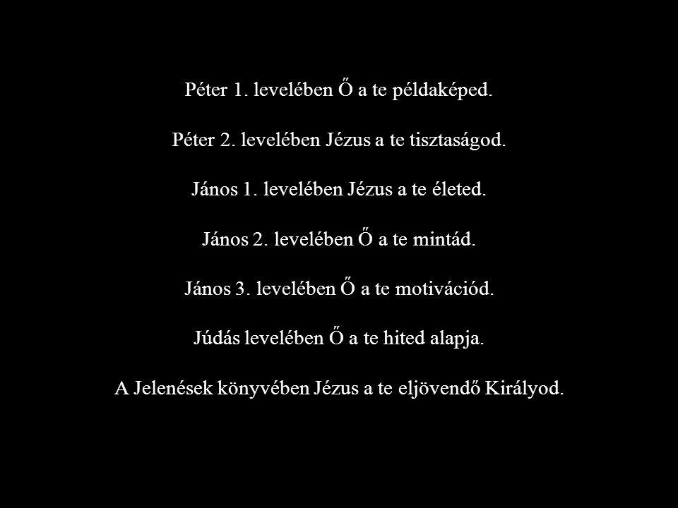 Péter 1.levelében Ő a te példaképed. Péter 2. levelében Jézus a te tisztaságod.