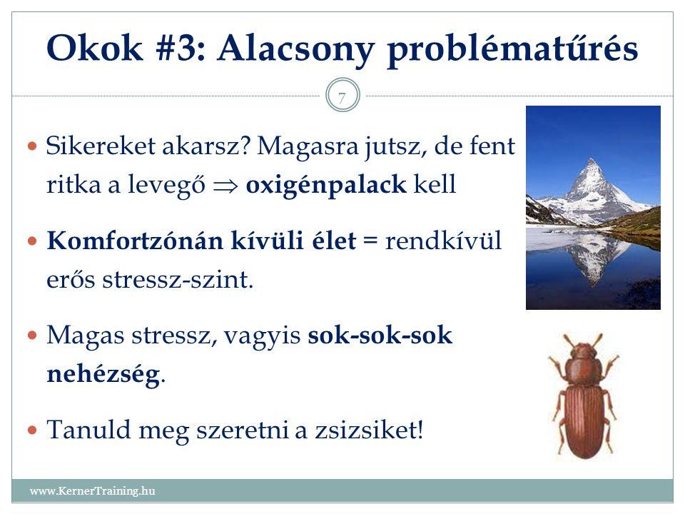 Okok #3: Alacsony problématűrés www.KernerTraining.hu 7 Sikereket akarsz? Magasra jutsz, de fent ritka a levegő  oxigénpalack kell Komfortzónán kívül