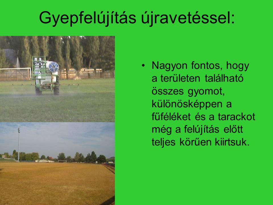 Gyepfelújítás újravetéssel: Nagyon fontos, hogy a területen található összes gyomot, különösképpen a fűféléket és a tarackot még a felújítás előtt teljes körűen kiirtsuk.