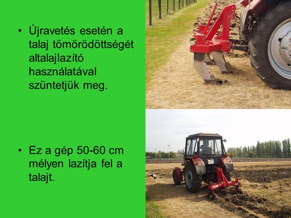 Újravetés esetén a talaj tömörödöttségét altalajlazító használatával szüntetjük meg.