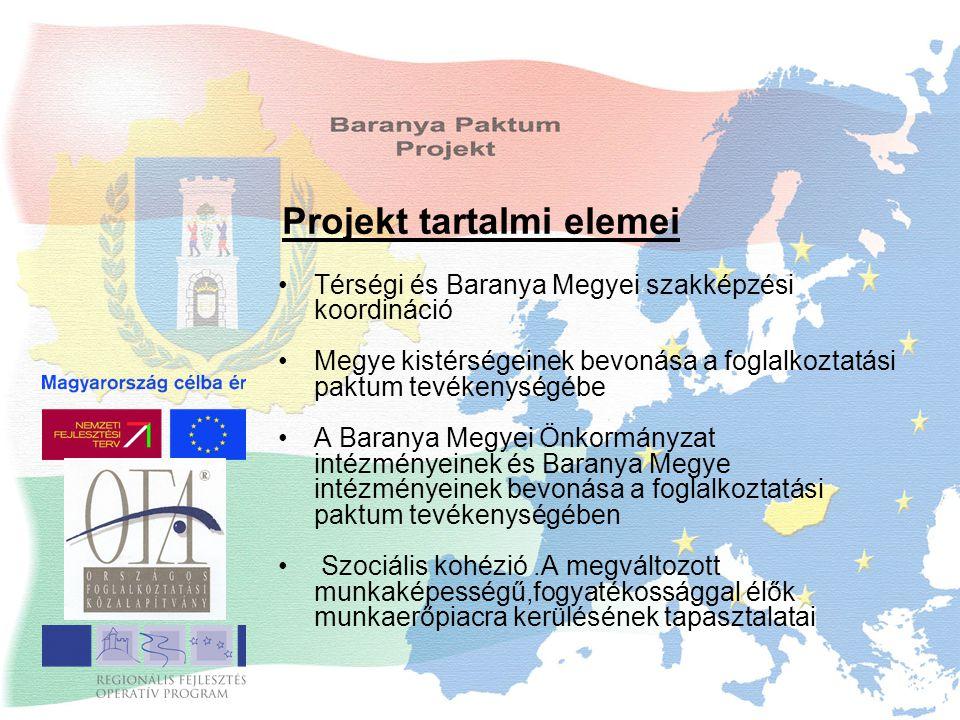 Projekt tartalmi elemei Térségi és Baranya Megyei szakképzési koordináció Megye kistérségeinek bevonása a foglalkoztatási paktum tevékenységébe A Baranya Megyei Önkormányzat intézményeinek és Baranya Megye intézményeinek bevonása a foglalkoztatási paktum tevékenységében Szociális kohézió.A megváltozott munkaképességű,fogyatékossággal élők munkaerőpiacra kerülésének tapasztalatai