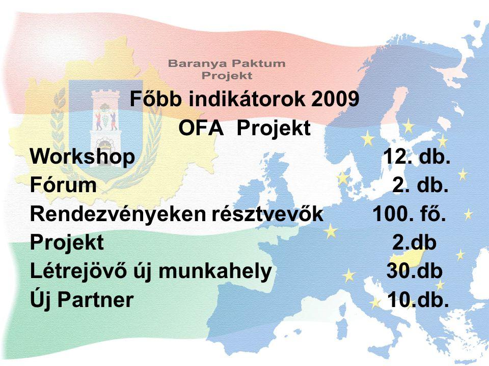 Főbb indikátorok 2009 OFA Projekt Workshop 12. db.