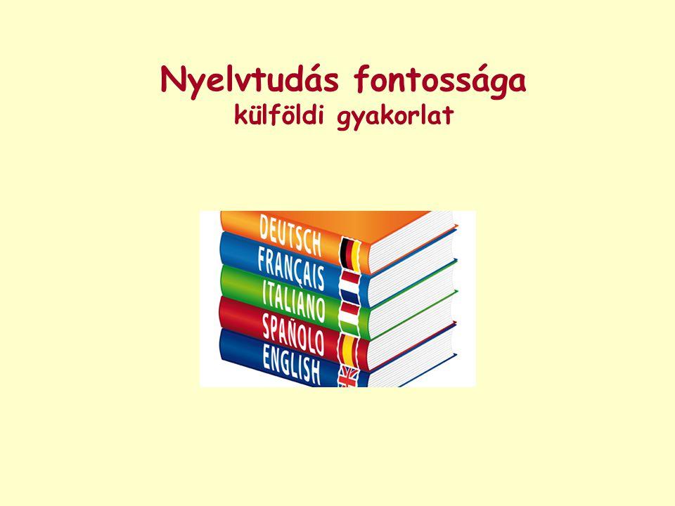 Nyelvtudás fontossága külföldi gyakorlat