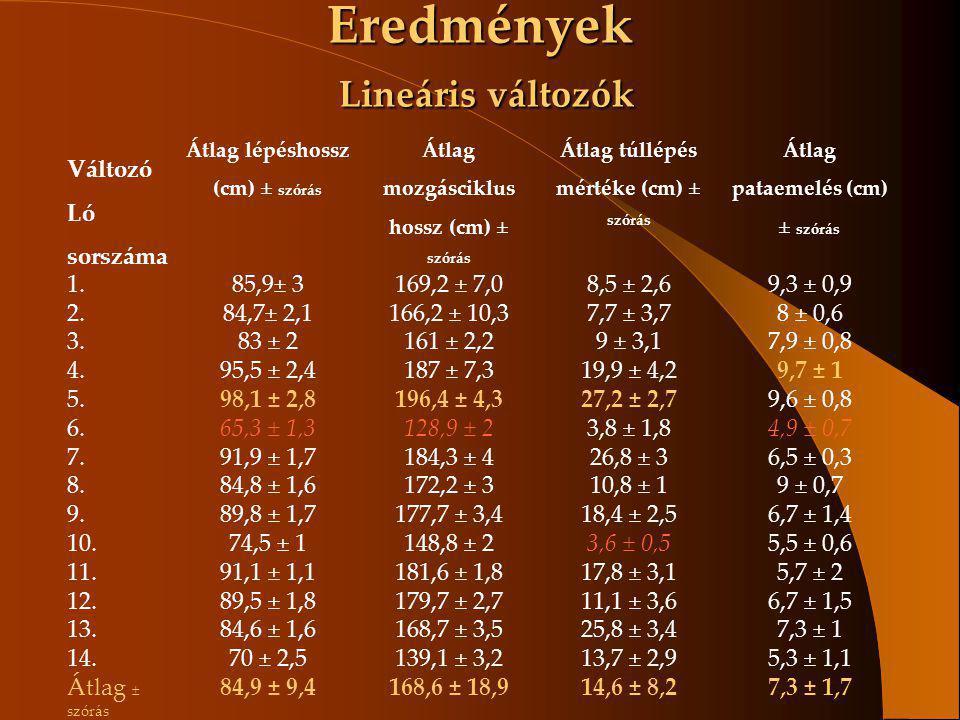 Eredmények Lineáris változók Változó Ló sorszáma Átlag lépéshossz (cm) ± szórás Átlag mozgásciklus hossz (cm) ± szórás Átlag túllépés mértéke (cm) ± s