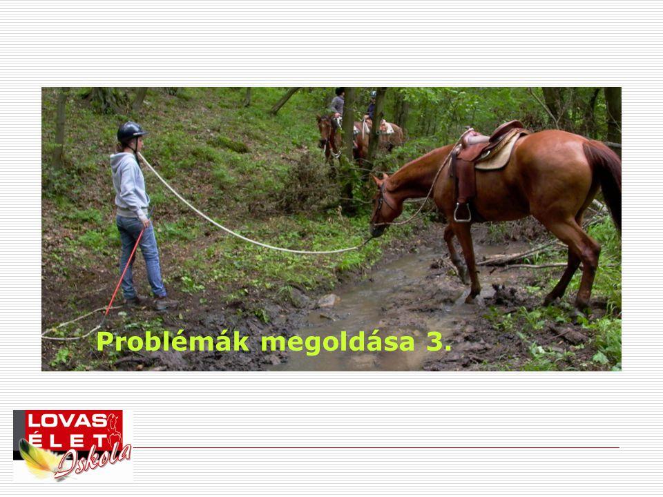 Problémák megoldása 3.