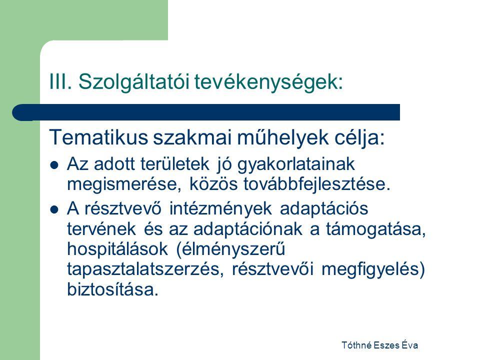 Tóthné Eszes Éva III. Szolgáltatói tevékenységek: Tematikus szakmai műhelyek célja: Az adott területek jó gyakorlatainak megismerése, közös továbbfejl