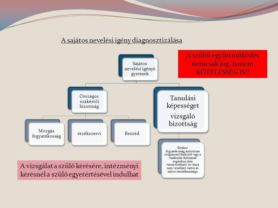 A sajátos nevelési igény diagnosztizálása Sajátos nevelési igényű gyermek Országos szakértői bizottság Mozgás fogyatékosság érzékszerviBeszéd Tanulási