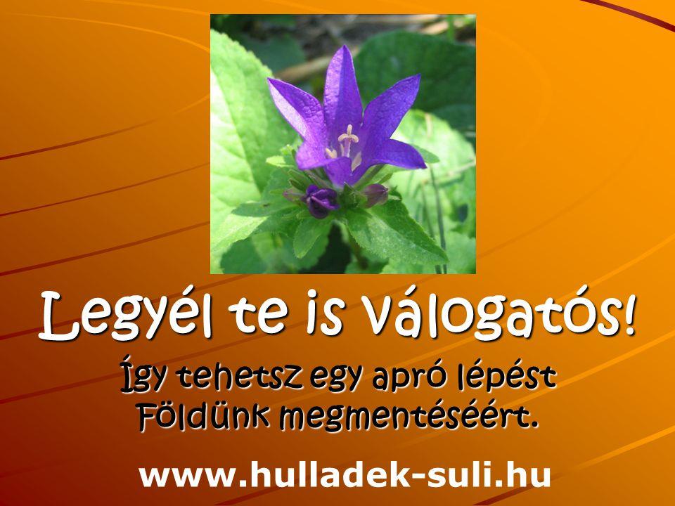 Legyél te is válogatós! Így tehetsz egy apró lépést Földünk megmentéséért. www.hulladek-suli.hu
