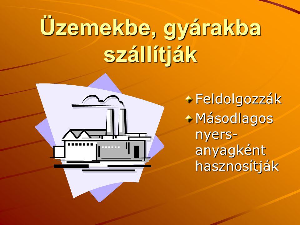 Üzemekbe, gyárakba szállítják Feldolgozzák Másodlagos nyers- anyagként hasznosítják