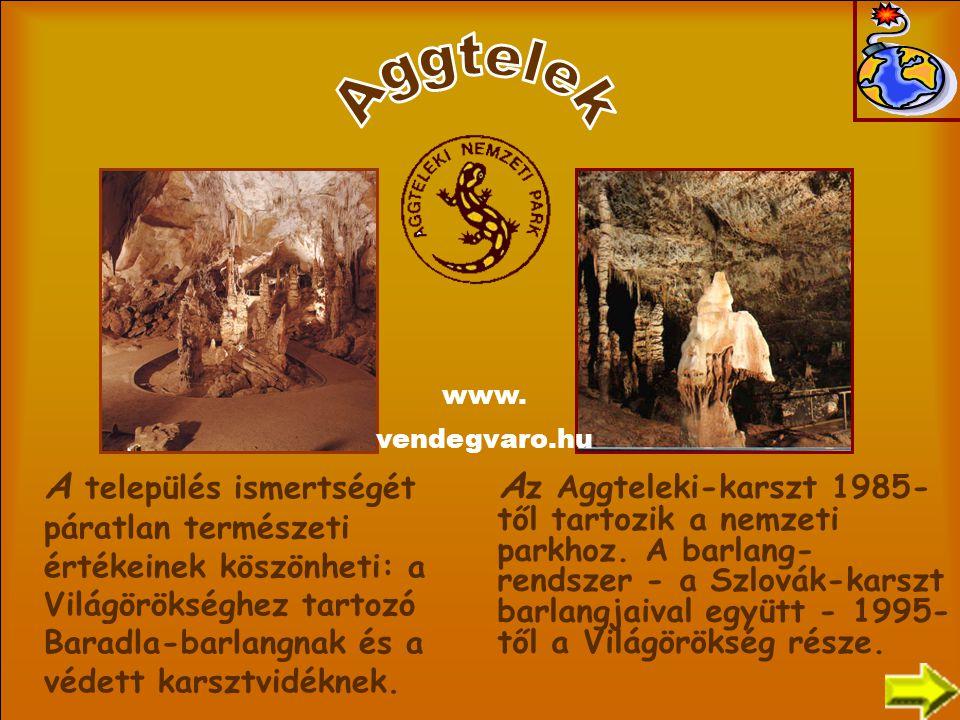 A z Aggteleki-karszt 1985- től tartozik a nemzeti parkhoz. A barlang- rendszer - a Szlovák-karszt barlangjaival együtt - 1995- től a Világörökség rész