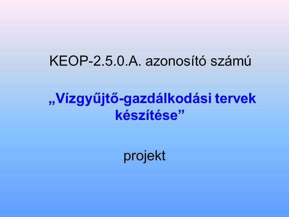 """KEOP-2.5.0.A. azonosító számú """"Vízgyűjtő-gazdálkodási tervek készítése projekt"""