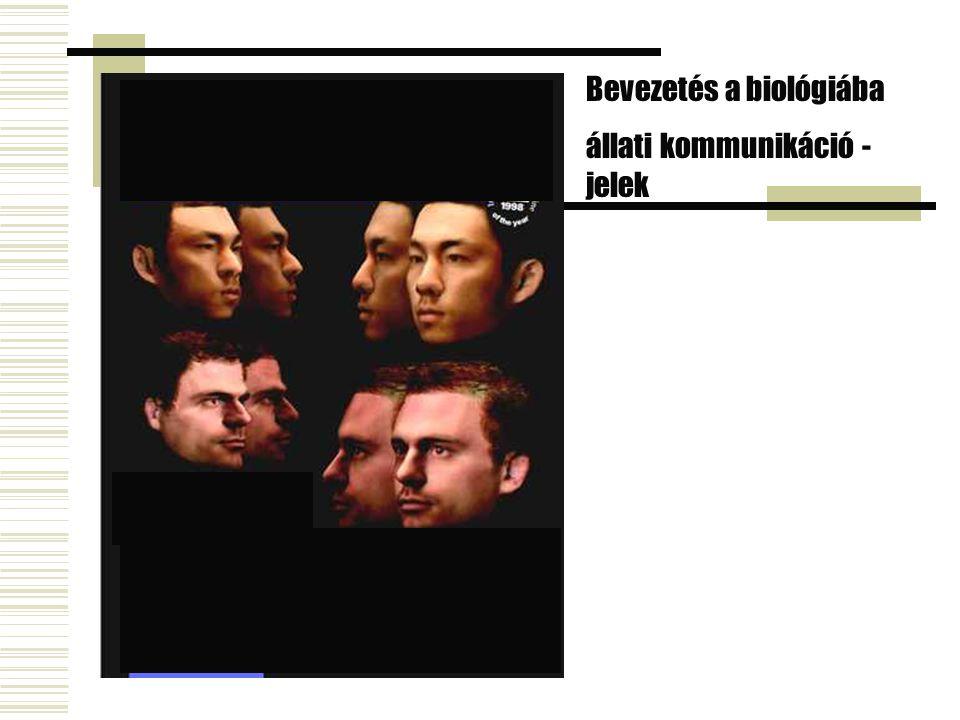 Bevezetés a biológiába állati kommunikáció - jelek