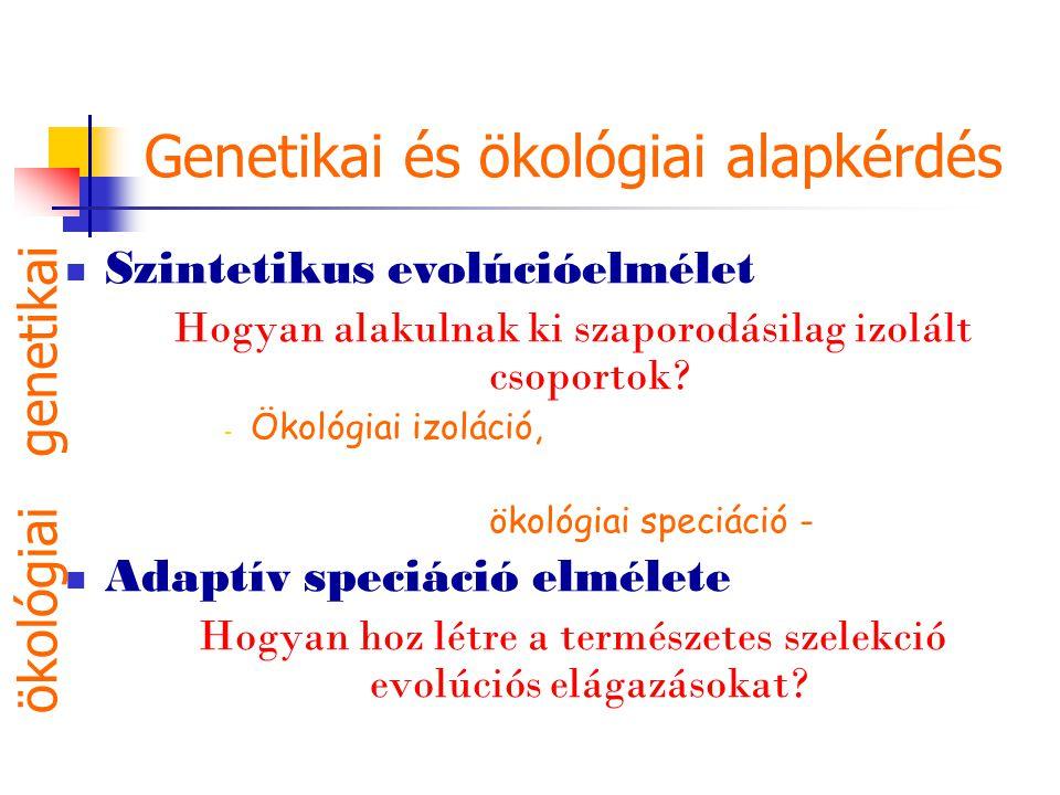 Genetikai és ökológiai alapkérdés Szintetikus evolúcióelmélet Hogyan alakulnak ki szaporodásilag izolált csoportok? - Ökológiai izoláció, ökológiai sp