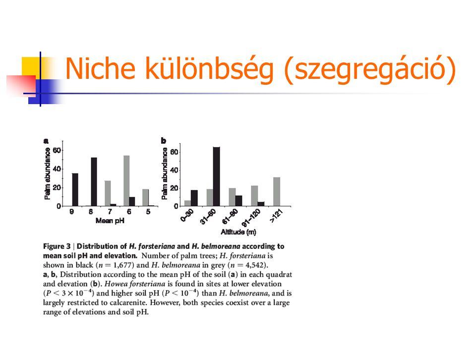 Niche különbség (szegregáció)
