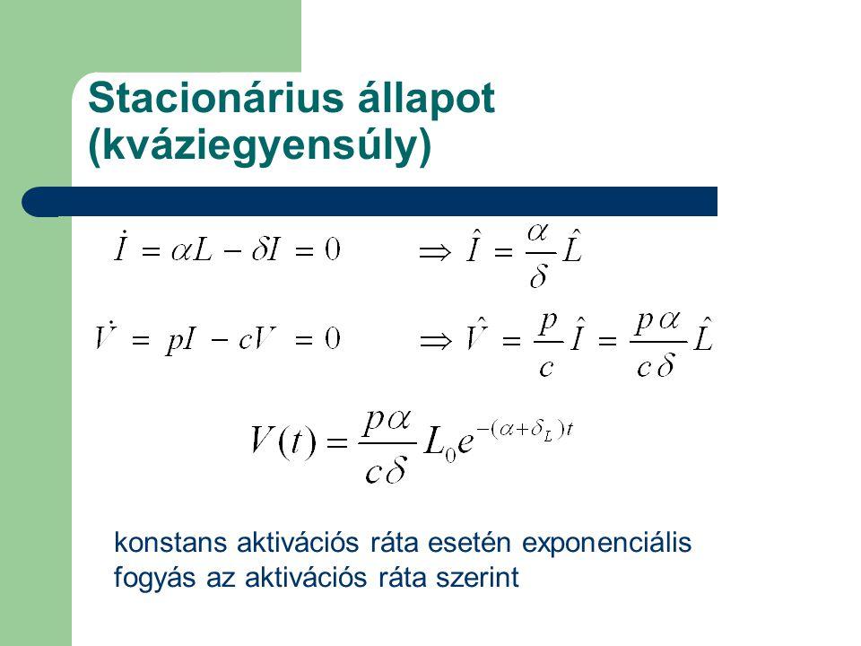 Stacionárius állapot (kváziegyensúly) konstans aktivációs ráta esetén exponenciális fogyás az aktivációs ráta szerint
