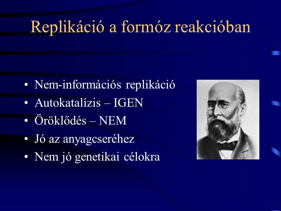 Replikáció a formóz reakcióban Nem-információs replikáció Autokatalízis – IGEN Öröklődés – NEM Jó az anyagcseréhez Nem jó genetikai célokra