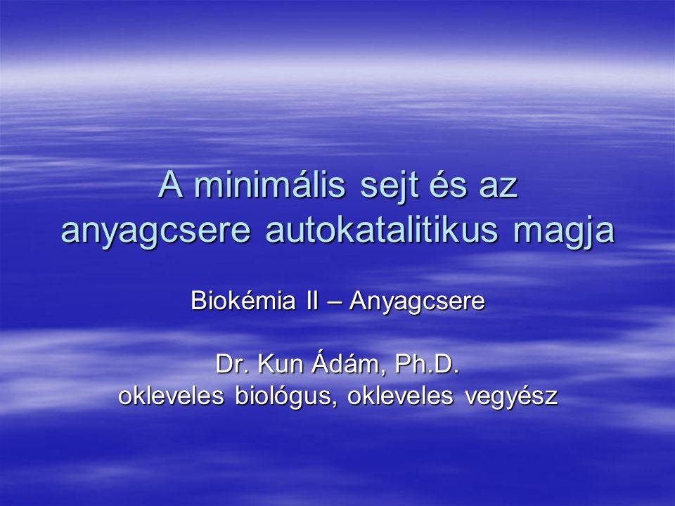 A minimális sejt és az anyagcsere autokatalitikus magja Biokémia II – Anyagcsere Dr. Kun Ádám, Ph.D. okleveles biológus, okleveles vegyész