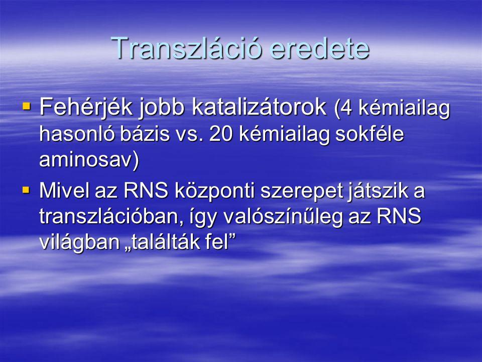 Transzláció eredete  Fehérjék jobb katalizátorok (4 kémiailag hasonló bázis vs. 20 kémiailag sokféle aminosav)  Mivel az RNS központi szerepet játsz