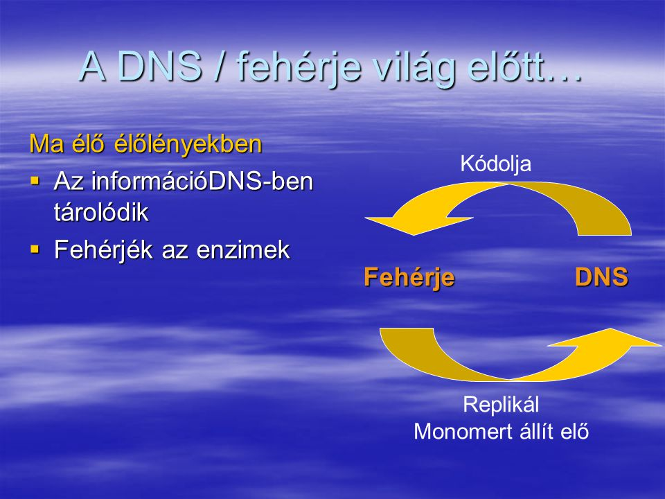 Egy zsák enzim és DNS  Működőképes-e ez a sejt.