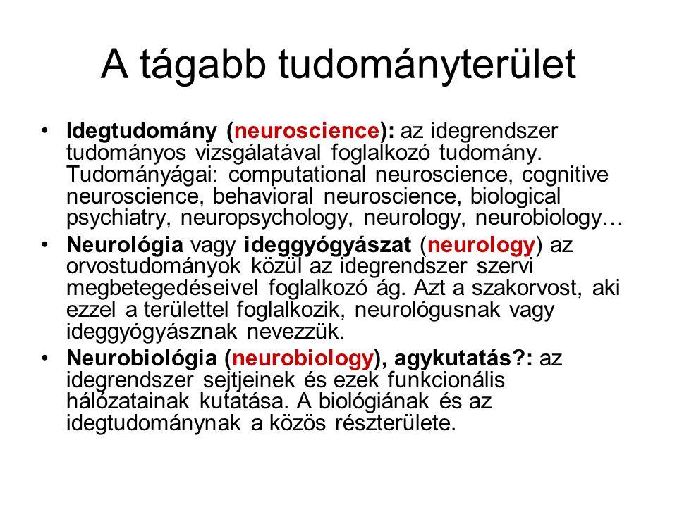 A tágabb tudományterület Idegtudomány (neuroscience): az idegrendszer tudományos vizsgálatával foglalkozó tudomány. Tudományágai: computational neuros