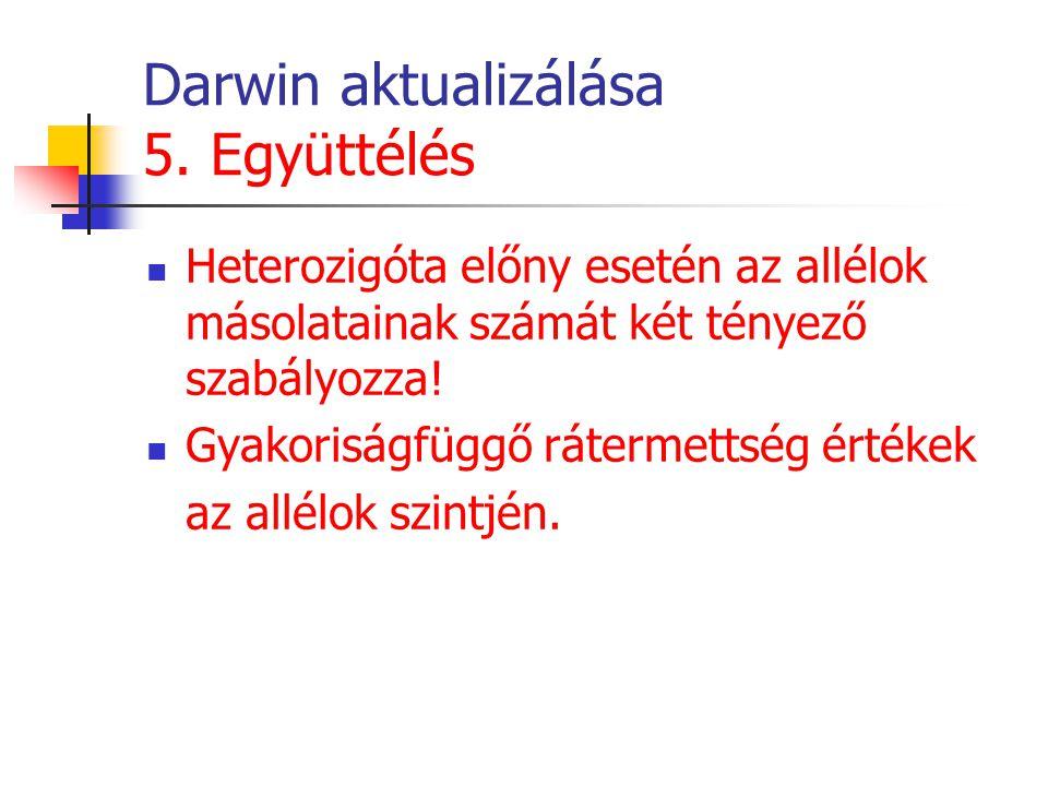 Darwin aktualizálása 5. Együttélés Heterozigóta előny esetén az allélok másolatainak számát két tényező szabályozza! Gyakoriságfüggő rátermettség érté