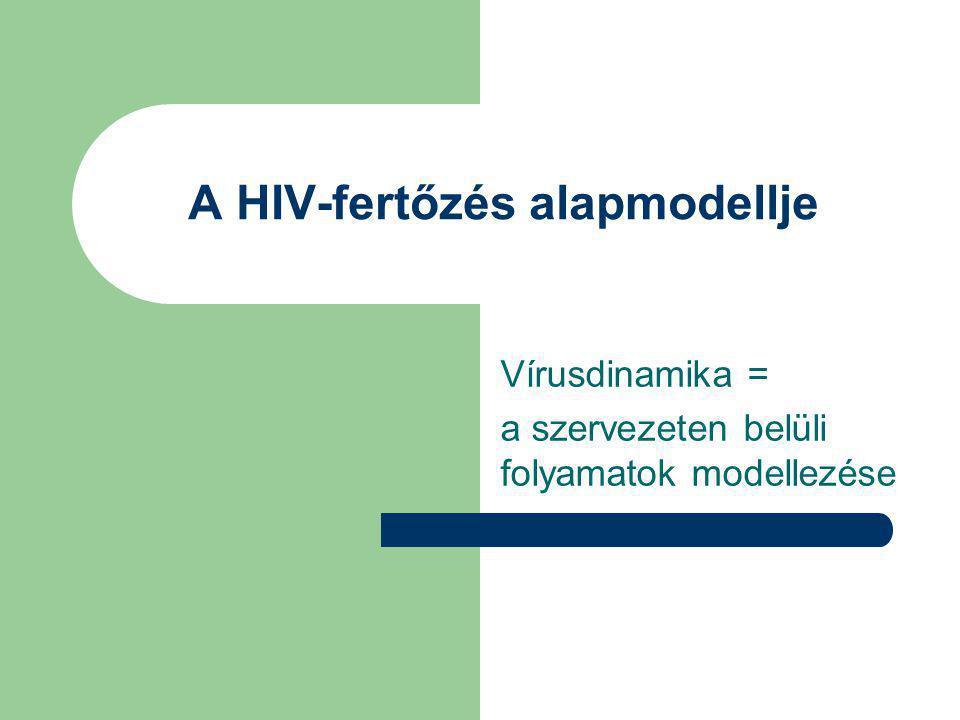 A HIV-fertőzés alapmodellje Vírusdinamika = a szervezeten belüli folyamatok modellezése