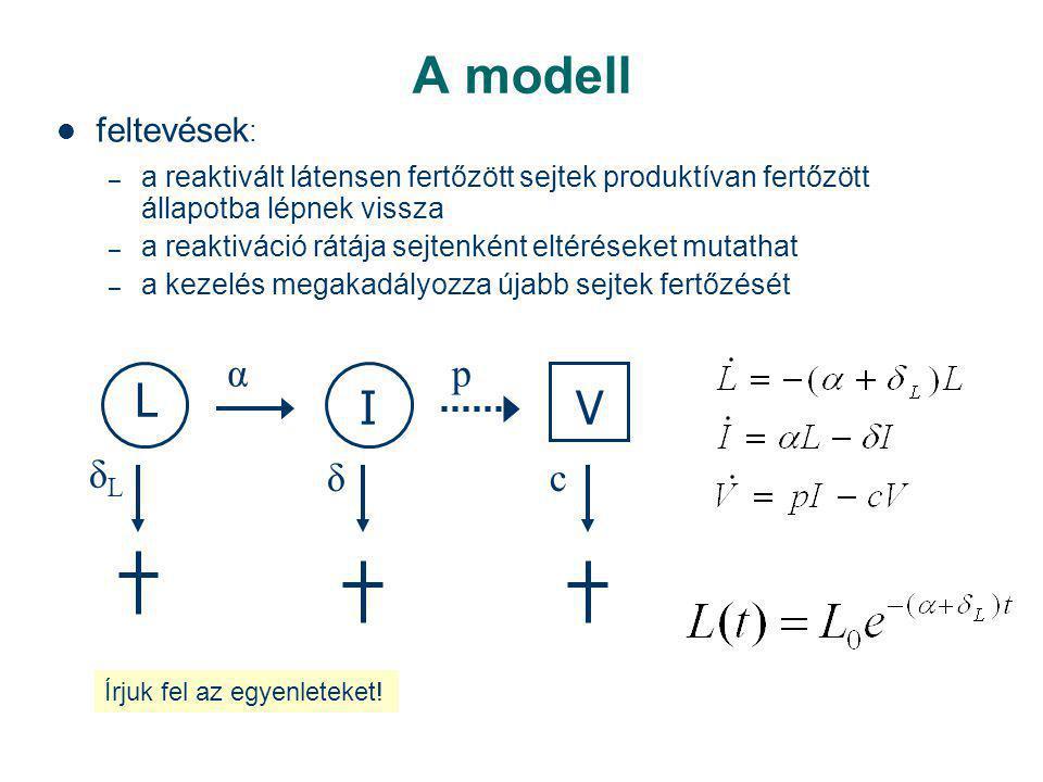 A modell feltevések : – a reaktivált látensen fertőzött sejtek produktívan fertőzött állapotba lépnek vissza – a reaktiváció rátája sejtenként eltéréseket mutathat – a kezelés megakadályozza újabb sejtek fertőzését L VI α δLδL δc p Írjuk fel az egyenleteket!