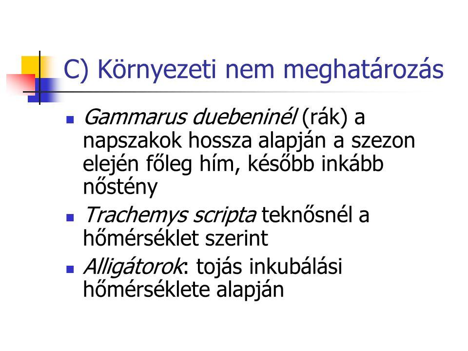 C) Környezeti nem meghatározás Gammarus duebeninél (rák) a napszakok hossza alapján a szezon elején főleg hím, később inkább nőstény Trachemys scripta
