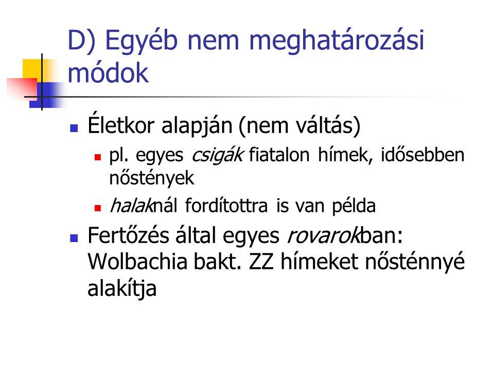 D) Egyéb nem meghatározási módok Életkor alapján (nem váltás) pl. egyes csigák fiatalon hímek, idősebben nőstények halaknál fordítottra is van példa F