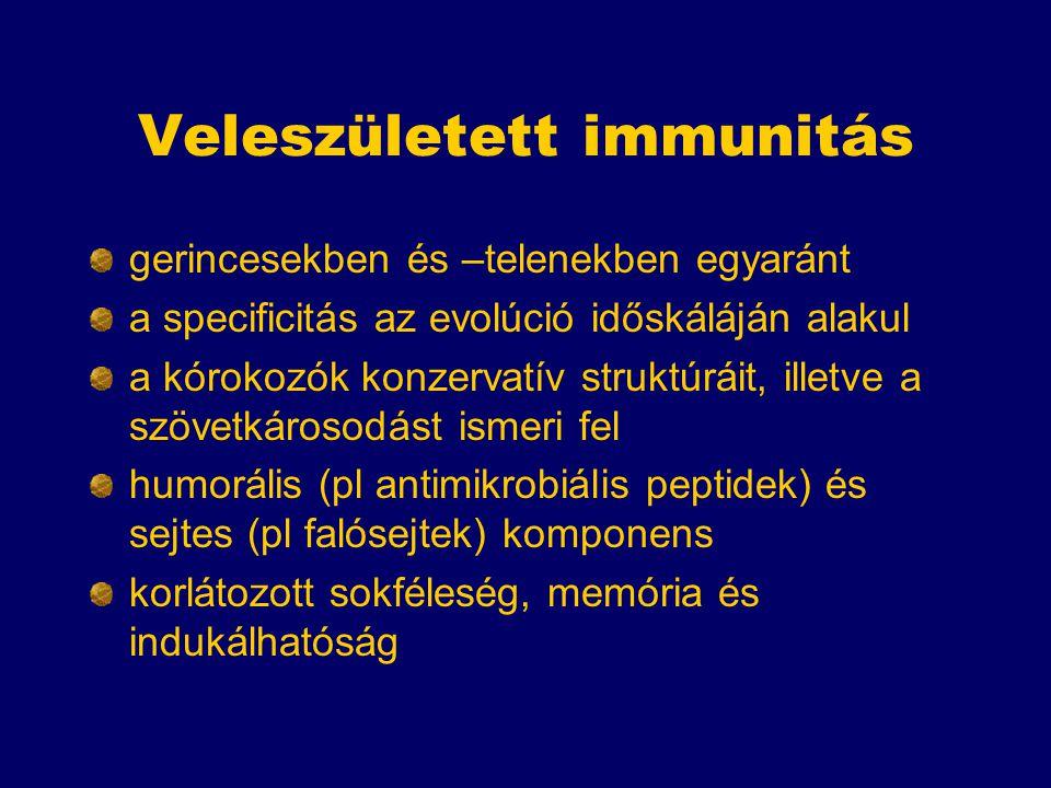 Veleszületett immunitás gerincesekben és –telenekben egyaránt a specificitás az evolúció időskáláján alakul a kórokozók konzervatív struktúráit, illetve a szövetkárosodást ismeri fel humorális (pl antimikrobiális peptidek) és sejtes (pl falósejtek) komponens korlátozott sokféleség, memória és indukálhatóság