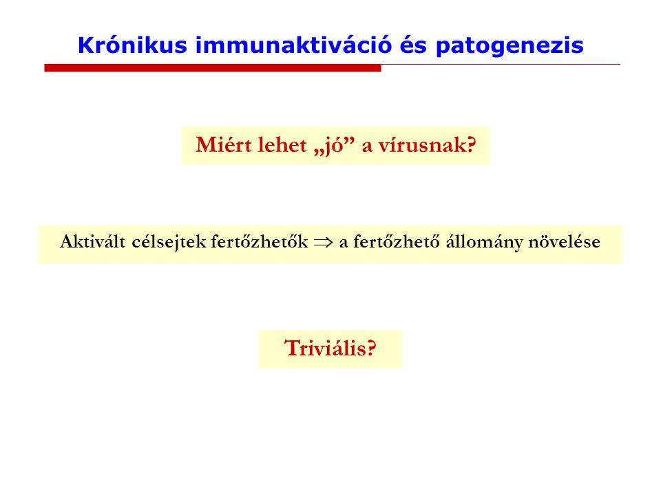 """Krónikus immunaktiváció és patogenezis Miért lehet """"jó a vírusnak."""