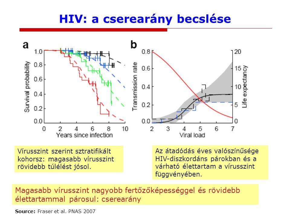 HIV: a cserearány becslése Vírusszint szerint sztratifikált kohorsz: magasabb vírusszint rövidebb túlélést jósol.