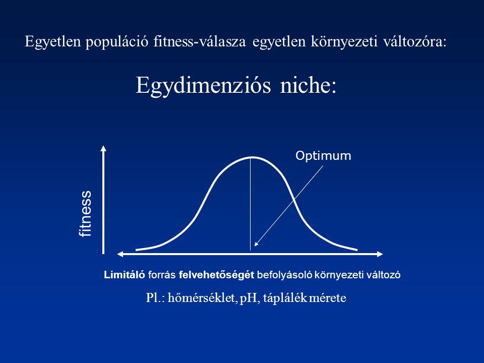 fitness Limitáló forrás felvehetőségét befolyásoló környezeti változó Optimum Egyetlen populáció fitness-válasza egyetlen környezeti változóra: Egydim