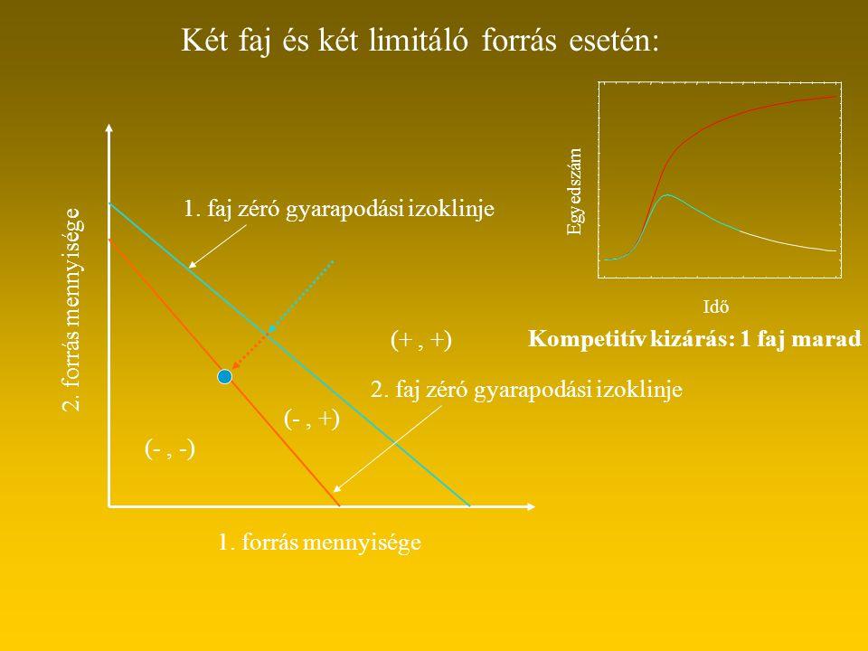 Két faj és két limitáló forrás esetén: 1. forrás mennyisége 2. forrás mennyisége 1. faj zéró gyarapodási izoklinje 2. faj zéró gyarapodási izoklinje (