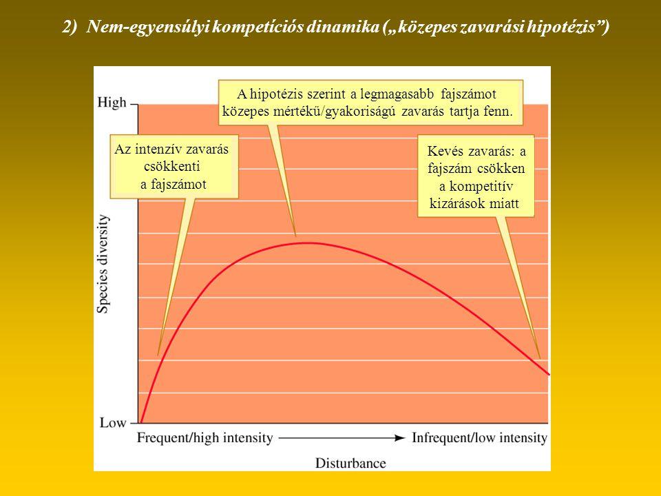 """2) Nem-egyensúlyi kompetíciós dinamika (""""közepes zavarási hipotézis"""") Az intenzív zavarás csökkenti a fajszámot A hipotézis szerint a legmagasabb fajs"""