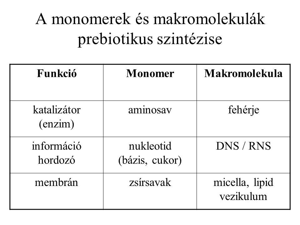 A monomerek és makromolekulák prebiotikus szintézise FunkcióMonomerMakromolekula katalizátor (enzim) aminosavfehérje információ hordozó nukleotid (báz
