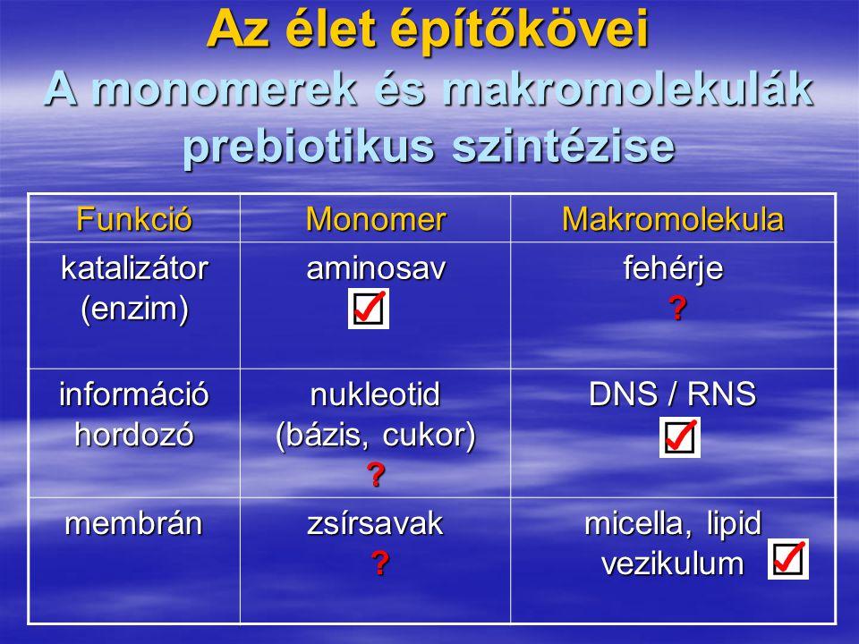 Az élet építőkövei A monomerek és makromolekulák prebiotikus szintézise FunkcióMonomer Makromolekula katalizátor (enzim) aminosav fehérje ? információ