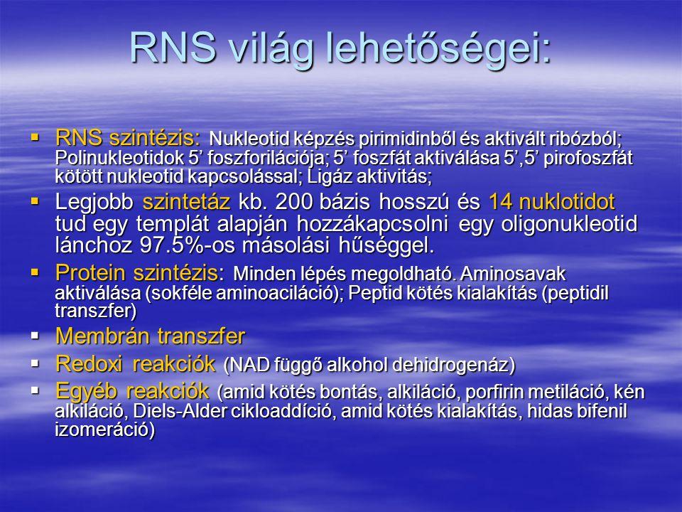 RNS világ lehetőségei:  RNS szintézis: Nukleotid képzés pirimidinből és aktivált ribózból; Polinukleotidok 5' foszforilációja; 5' foszfát aktiválása 5',5' pirofoszfát kötött nukleotid kapcsolással; Ligáz aktivitás;  Legjobb szintetáz kb.