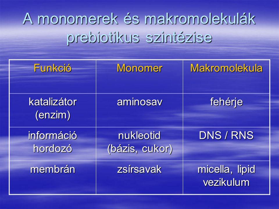 A monomerek és makromolekulák prebiotikus szintézise FunkcióMonomer Makromolekula katalizátor (enzim) aminosav fehérje információ hordozó nukleotid (bázis, cukor) DNS / RNS membrán zsírsavak micella, lipid vezikulum