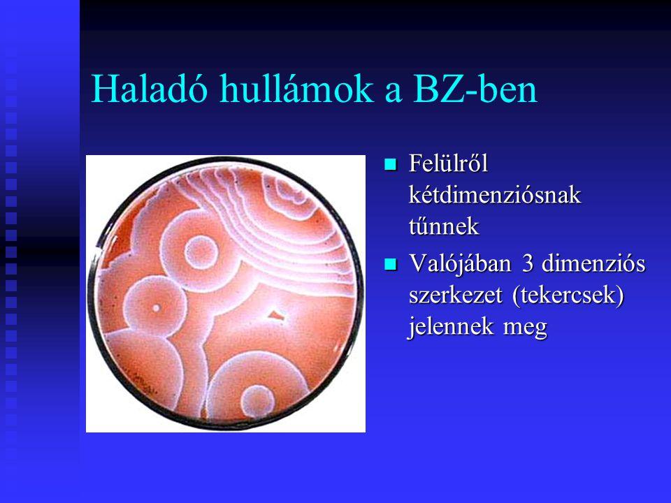 Haladó hullámok a BZ-ben Felülről kétdimenziósnak tűnnek Valójában 3 dimenziós szerkezet (tekercsek) jelennek meg