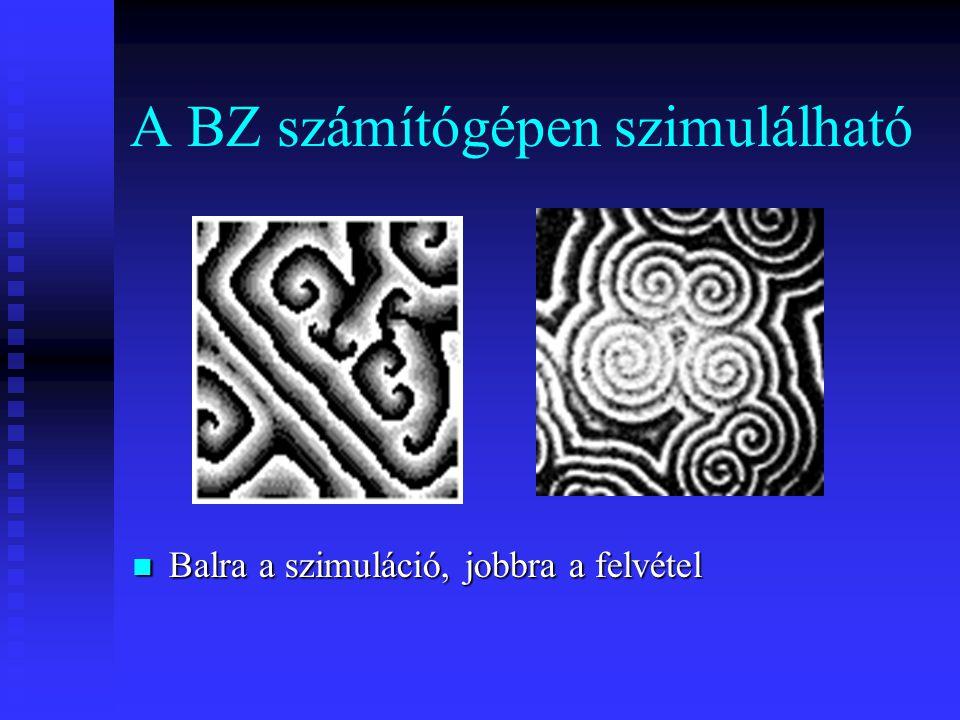 A BZ számítógépen szimulálható Balra a szimuláció, jobbra a felvétel