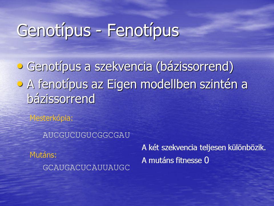 Genotípus - Fenotípus Genotípus a szekvencia (bázissorrend) Genotípus a szekvencia (bázissorrend) A fenotípus az Eigen modellben szintén a bázissorrend A fenotípus az Eigen modellben szintén a bázissorrend AUCGUCUGUCGGCGAU GCAUGACUCAUUAUGC A két szekvencia teljesen különbözik.