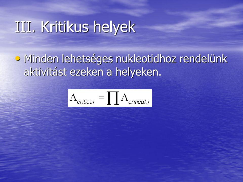 III. Kritikus helyek Minden lehetséges nukleotidhoz rendelünk aktivitást ezeken a helyeken. Minden lehetséges nukleotidhoz rendelünk aktivitást ezeken