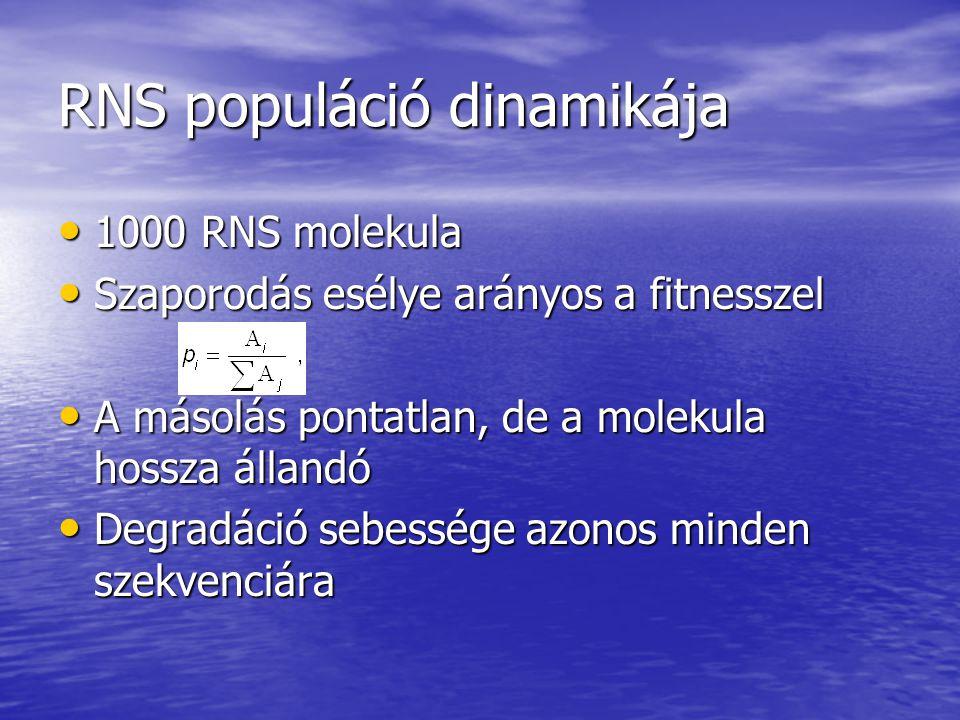 RNS populáció dinamikája 1000 RNS molekula 1000 RNS molekula Szaporodás esélye arányos a fitnesszel Szaporodás esélye arányos a fitnesszel A másolás pontatlan, de a molekula hossza állandó A másolás pontatlan, de a molekula hossza állandó Degradáció sebessége azonos minden szekvenciára Degradáció sebessége azonos minden szekvenciára
