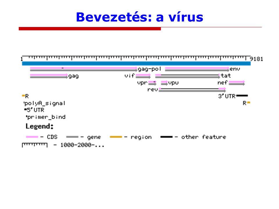 Bevezetés: a vírus