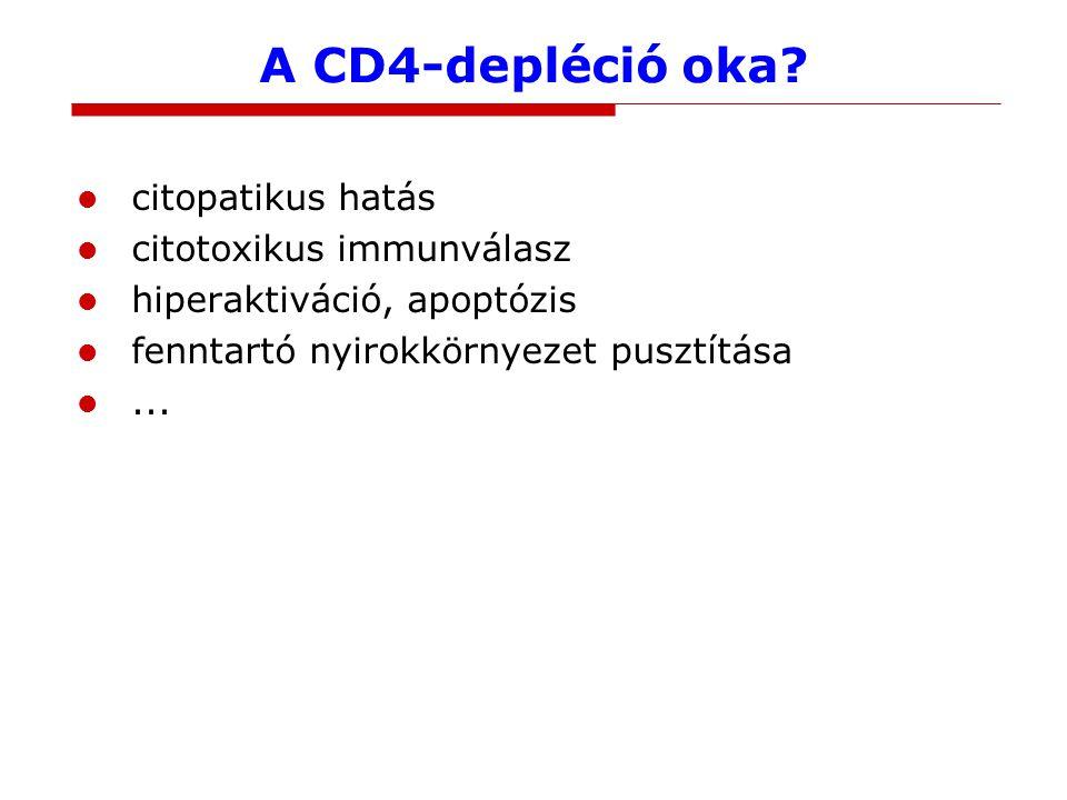 A CD4-depléció oka? citopatikus hatás citotoxikus immunválasz hiperaktiváció, apoptózis fenntartó nyirokkörnyezet pusztítása...