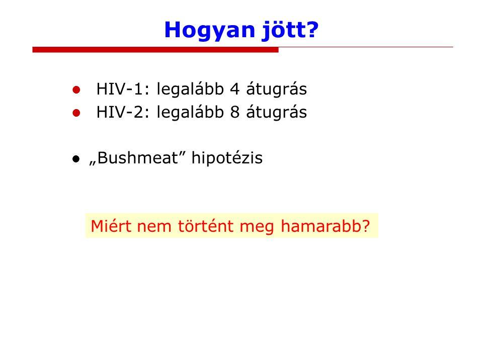 """Hogyan jött? HIV-1: legalább 4 átugrás HIV-2: legalább 8 átugrás """"Bushmeat"""" hipotézis Miért nem történt meg hamarabb?"""